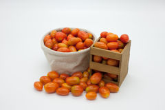 Kleine Tomate Lizenzfreie Stockfotos