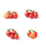 Kleine tomaten Royalty-vrije Stock Afbeelding