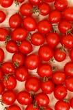 Kleine Tomaten auf hellem hölzernem Hintergrund Lizenzfreies Stockbild