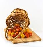 Kleine tomaten in een mand Stock Foto