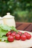 Kleine Tomaten und Kopfsalat Lizenzfreie Stockfotografie
