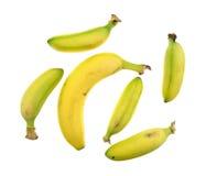 Kleine und große Bananen auf einem weißen Hintergrund Stockbilder