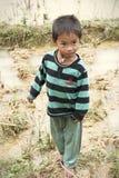Kleine Vietnamese jongen in padievelden Stock Foto's