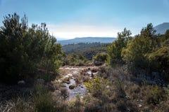 Kleine vijver omhoog in de bergen zuidelijk Frankrijk Stock Fotografie
