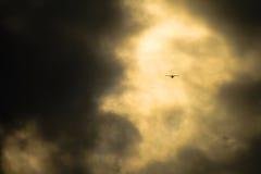 Kleine vliegtuig grote wolk Stock Afbeeldingen