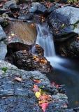 Kleine Wasserfälle Stockbilder