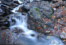 Kleine Wasserfälle Stockfotografie
