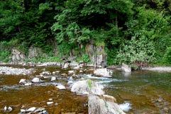 Kleine Wasserfälle auf dem malerischen Gebirgsfluss Stockfotos