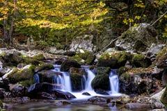 Kleine Wasserfälle auf einem klaren Gebirgsstrom Stockfotos