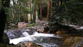 Kleine Wasserfälle des transparenten Wassers innerhalb des Berges stock video footage
