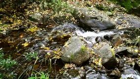 Kleine Wasserfälle des transparenten Wassers innerhalb des Berges stock footage