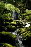 Kleine Wasserfälle gesehen in den Pyrenäen Stockfoto