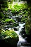 Kleine Wasserfälle gesehen in den Pyrenäen Stockfotos