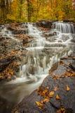 Kleine Wasserfälle im Fall lizenzfreies stockbild