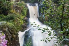 Kleine Wasserfälle mit Felsen Stockbilder