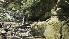 Kleine waterval in bergen stock videobeelden