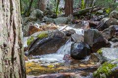 Kleine waterval bij Bridalveil-Kreek Royalty-vrije Stock Foto's