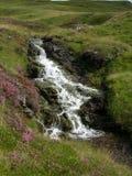 Kleine waterval bij een kreek gecombineerd met purpere heide die Groene Heuvels bij Glenshee-Vallei, Grampian-Bergen, Schotland r stock afbeelding