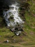 Kleine waterval bij een kreek gecombineerd met purpere heide die Groene Heuvels bij Glenshee-Vallei, Grampian-Bergen, Schotland r royalty-vrije stock afbeeldingen