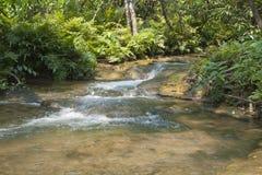 Kleine waterval in bos Royalty-vrije Stock Foto