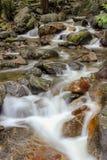 Kleine waterval of cataract in het bos stock afbeelding