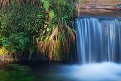 Kleine waterval in de zomer Stock Afbeelding