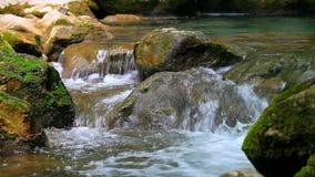 Kleine waterval in de zomerbos stock footage