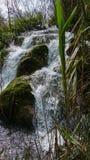 Kleine waterval door riet, Plitvice, Kroatië stock afbeeldingen