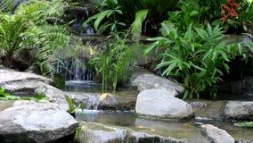 Kleine waterval en pool met rotsen en installaties die in aard omringen stock footage