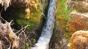 Kleine waterval en schone rivier stock footage