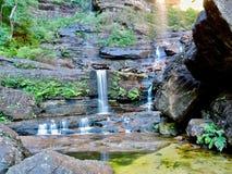Kleine waterval in het Blauwe Bergen Nationale Park stock fotografie