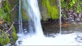 Kleine waterval in het bos stock footage