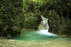Kleine waterval in het bos Stock Afbeelding