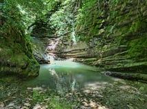 Kleine waterval in het bos stock foto's