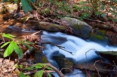 Kleine waterval in kreek Royalty-vrije Stock Foto