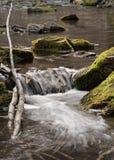 Kleine waterval met drijfhout en stenen royalty-vrije stock foto