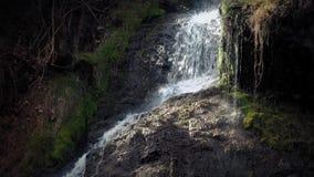 Kleine Waterval in Mooi Avondzonlicht stock video