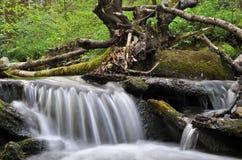 Kleine waterval op de vreedzame berglente Royalty-vrije Stock Afbeelding