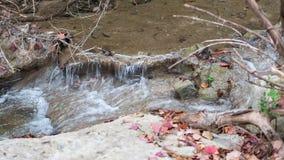 Kleine waterval in rivier, tijdens daling met kleurrijke bladeren stock fotografie