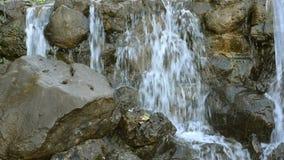 Kleine waterval van de meeslepende cascade van de bergrivier over stenen stock videobeelden