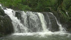 Kleine waterval van stromende rivier in tropisch bos met geluid stock videobeelden