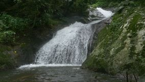 Kleine waterval van stromende rivier in tropisch bos met geluid stock footage