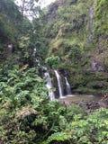 3 kleine watervallen op manier aan Hana Maui Hawaii Royalty-vrije Stock Foto's