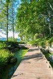 Kleine weg door het meer Royalty-vrije Stock Fotografie