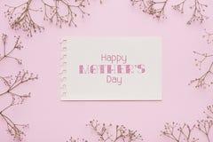 Kleine weiße Blumen auf rosa Hintergrund Flache Lage Beschneidungspfad eingeschlossen Kopieren Sie Platz Stockfotografie