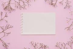 Kleine weiße Blumen auf rosa Hintergrund Flache Lage Beschneidungspfad eingeschlossen Kopieren Sie Platz Stockfoto