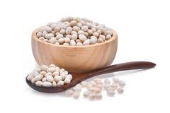 Kleine weiße Bohnen, Bohne, weiße Erbse, weiße Niere Stockbild