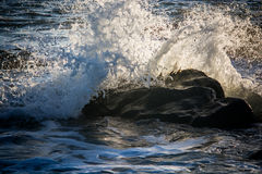 Kleine Welle an Rialto-Strand im olympischen Nationalpark, Washington, US Stockfotos