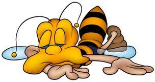 Kleine Wespe Schlafens lizenzfreie abbildung