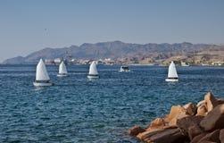 Kleine Yachten am Golf von Eilat, Israel lizenzfreies stockfoto